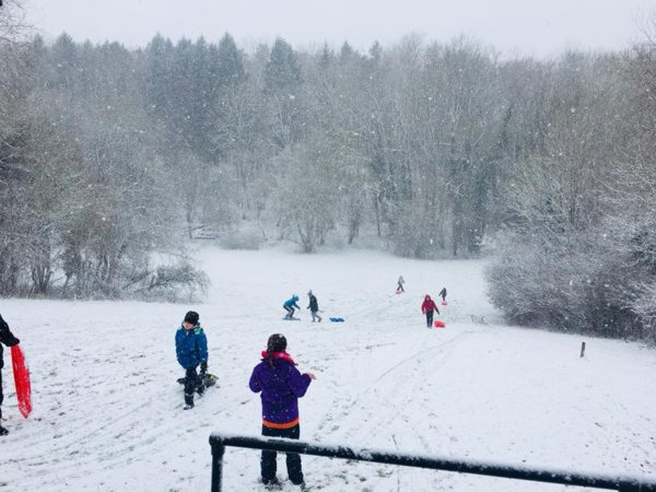 Sledging at Downe